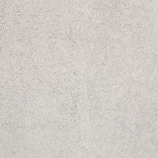 Shaw Floors Value Collections Cashmere Iv Lg Net Silver Lining 00123_CC50B