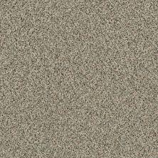 Shaw Floors Value Collections Angora Classic I Lg Net Dartmoor 0136A_CC56B