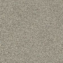 Shaw Floors Value Collections Angora Classic III Lg Net Corriedale 0550A_CC58B