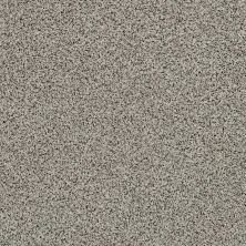 Shaw Floors Value Collections Angora Classic Iv Lg Net Lamb 0135A_CC59B
