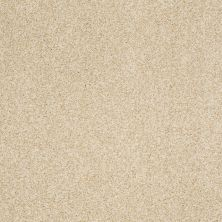 Shaw Floors Value Collections Milford Sound Lg Net Churro 00105_CC60B