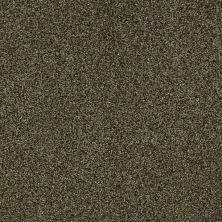 Shaw Floors Value Collections Milford Sound Lg Net Edford Meadow 00303_CC60B