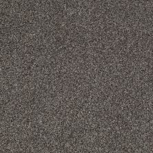 Shaw Floors Value Collections Milford Sound Lg Net Alaskan Musk 00506_CC60B
