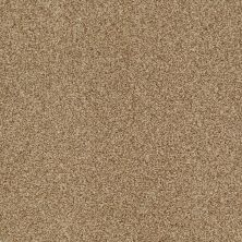 Shaw Floors Value Collections Milford Sound Lg Net Navajo 00703_CC60B
