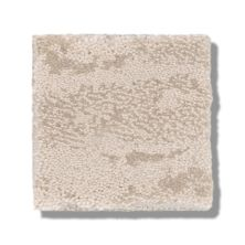 Shaw Floors Caress By Shaw Winter Solace Delicate Cream 00156_CC68B