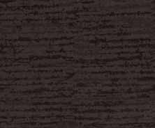 Shaw Floors Caress By Shaw Winter Solace Burma Brown 00752_CC68B