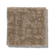 Shaw Floors Caress By Shaw Fine Structure Tumbleweed 00749_CC69B