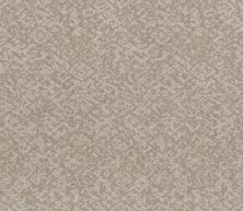 Shaw Floors Caress By Shaw Free Spirit Baltic Stone 00128_CC70B