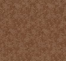 Shaw Floors Caress By Shaw Free Spirit Sunbaked 00650_CC70B