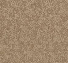 Shaw Floors Caress By Shaw Free Spirit Natural Beauty 00721_CC70B