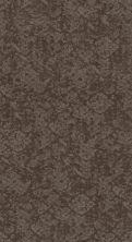 Shaw Floors Caress By Shaw Free Spirit Ridgeview 00751_CC70B