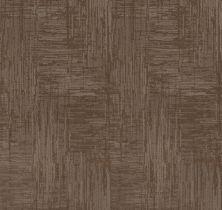 Shaw Floors Caress By Shaw Insightful Journey Tumbleweed 00749_CC71B