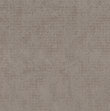 Shaw Floors Caress By Shaw Artistic Presence Stucco 00724_CC73B
