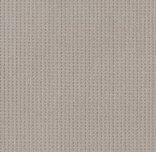Shaw Floors Caress By Shaw Soft Symmetry Stucco 00724_CC74B