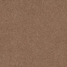 Shaw Floors Caress By Shaw Cozy Harbor II Sunbaked 00650_CC79B