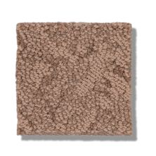 Shaw Floors Caress By Shaw Lavish Living Sunbaked 00650_CC80B