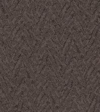 Shaw Floors Caress By Shaw Lavish Living Burma Brown 00752_CC80B