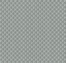 Shaw Floors Caress By Shaw Inspired Design Waters Edge 00307_CC81B