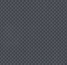 Shaw Floors Caress By Shaw Inspired Design Deep Sea 00433_CC81B