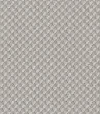 Shaw Floors Caress By Shaw Inspired Design Minimal 00514_CC81B