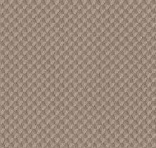 Shaw Floors Caress By Shaw Inspired Design Tumbleweed 00749_CC81B