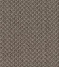 Shaw Floors Caress By Shaw Inspired Design Ridgeview 00751_CC81B