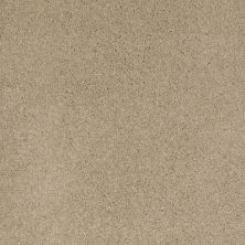 Shaw Floors Caress By Shaw Quiet Comfort I Panama 00700_CCB30