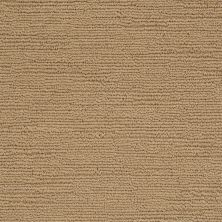 Shaw Floors Caress By Shaw Refined Indulgence Navajo 00703_CCB44