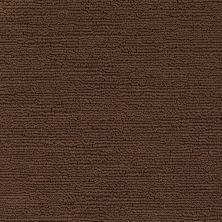 Shaw Floors Caress By Shaw Refined Indulgence Bison 00707_CCB44