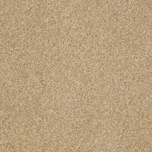 Shaw Floors Caress By Shaw Egmont Camel 00201_CCB61