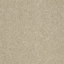 Shaw Floors Caress By Shaw Egmont Romney Marsh 00300_CCB61