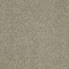 Shaw Floors Caress By Shaw Egmont Columbia 00502_CCB61