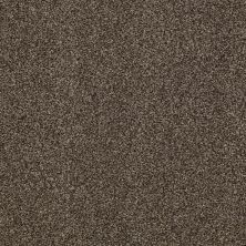 Shaw Floors Caress By Shaw Egmont Bourbonnais Grey 00505_CCB61
