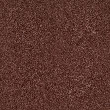 Shaw Floors Caress By Shaw Egmont Guanaco 00603_CCB61