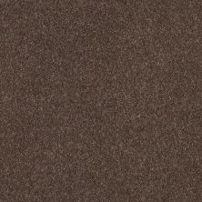 Shaw Floors Caress By Shaw Quiet Comfort Classic I Spring – Wood 00725_CCB96