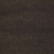 Shaw Floors Caress By Shaw Quiet Comfort Classic I Chestnut 00726_CCB96