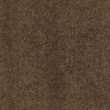 Shaw Floors Caress By Shaw Quiet Comfort Classic II Bison 00707_CCB97