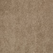 Shaw Floors Caress By Shaw Quiet Comfort Classic II Pebble Path 00722_CCB97