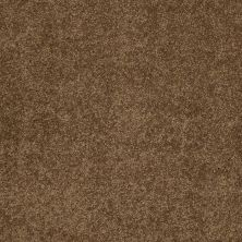 Shaw Floors Caress By Shaw Quiet Comfort Classic II Tobacco Leaf 00723_CCB97
