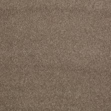 Shaw Floors Caress By Shaw Quiet Comfort Classic II Mesquite 00724_CCB97