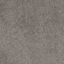 Shaw Floors Caress By Shaw Quiet Comfort Classic III Chinchilla 00526_CCB98
