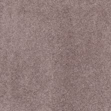 Shaw Floors Caress By Shaw Quiet Comfort Classic Iv Heather 00922_CCB99