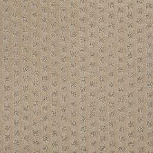 Shaw Floors Caress By Shaw My Expression Llama 00701_CCP10