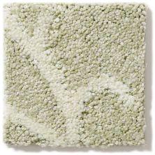 Shaw Floors Caress By Shaw Interlace Celadon 00322_CCP42
