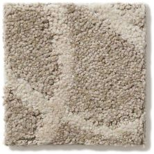 Shaw Floors Caress By Shaw Interlace Atlantic 00523_CCP42