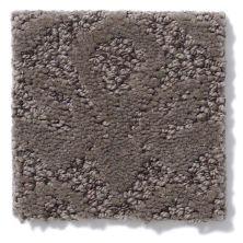 Shaw Floors Caress By Shaw Modern Amenities Chinchilla 00526_CCP43