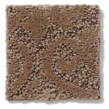 Shaw Floors Caress By Shaw Modern Amenities Pebble Path 00722_CCP43