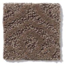 Shaw Floors Caress By Shaw Modern Amenities Mesquite 00724_CCP43