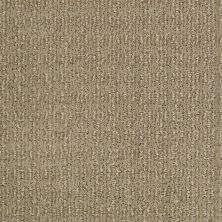 Shaw Floors Caress By Shaw Designers Trend Classic Llama 00701_CCP50