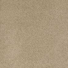 Shaw Floors Caress By Shaw Cashmere I Panama 00700_CCS01